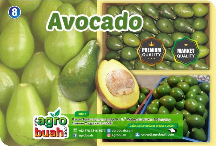 avocado supplier