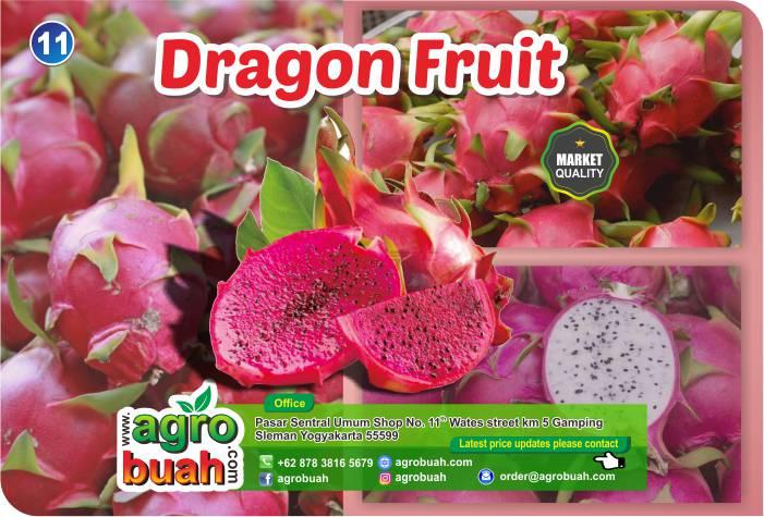 dragon fruit supplier