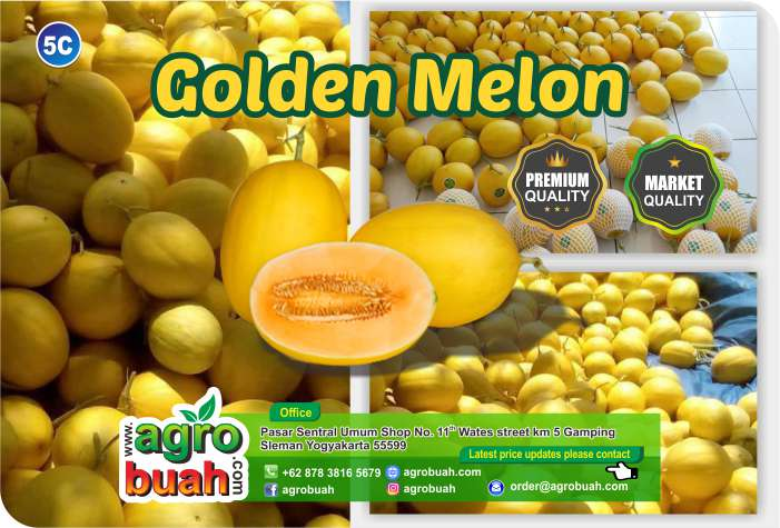 melon supplier