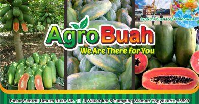 fresh fruit exporter
