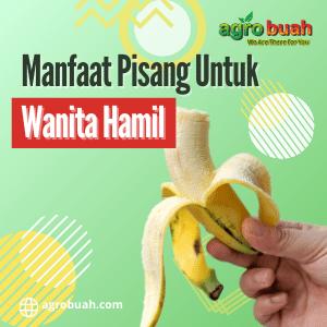 manfaat pisang untuk wanita hamil